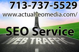 Looking for SEO service company